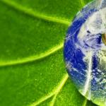 Bitcoin the Environmentalist